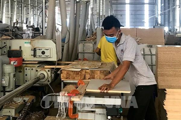 """Tổng cục Hải quan tháo """"vướng"""" cho doanh nghiệp xuất khẩu mặt hàng gỗ cao su dạng tấm"""