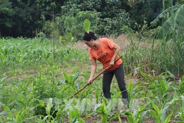 Tài chính toàn diện giúp người nghèo tiếp cận nguồn vốn ưu đãi