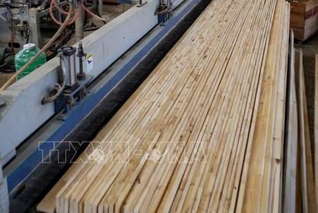 Xây dựng thị trường đồ gỗ minh bạch, hợp pháp