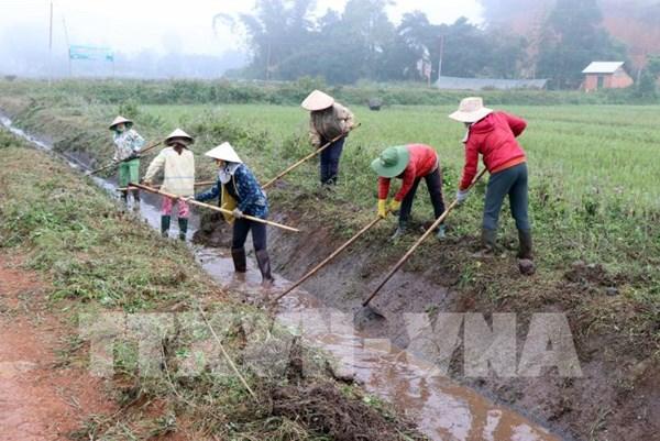 Nghiên cứu thông tin báo nêu liên quan đến sản xuất nông nghiệp