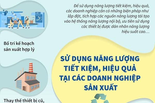 Việt Nam - Đan Mạch hợp tác thúc đẩy sử dụng năng lượng tiết kiệm, hiệu quả