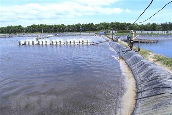 Tiền Giang phát huy lợi thế, tạo động lực cho ngành khai thác hải sản