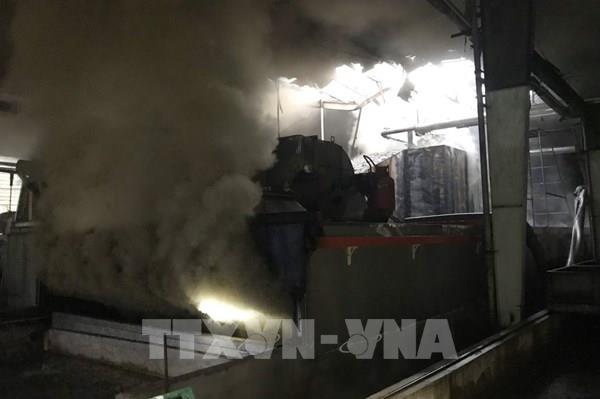 Hỏa hoạn thiêu rụi lò sấy Nhà máy chế biến mủ cao su Phương Hậu