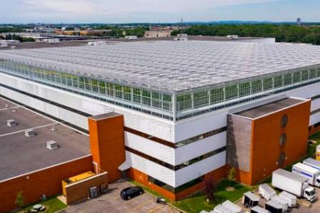 Ra mắt nhà kính lớn nhất thế giới trên mái nhà ở Canada