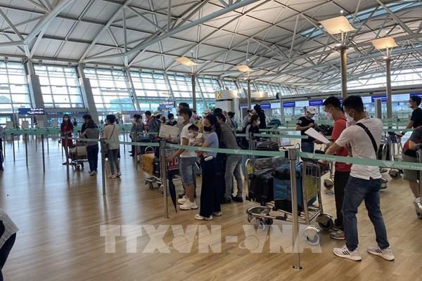 Dịch COVID -19: Đưa hơn 250 công dân Việt Nam từ Hàn Quốc về nước