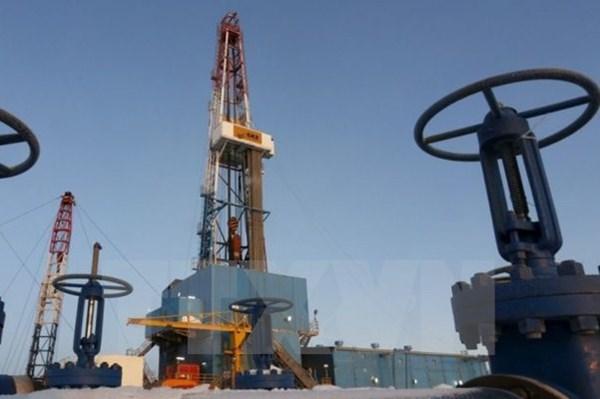 Công ty Trung Quốc tìm cơ hội đầu tư nhà máy lọc dầu tại Campuchia