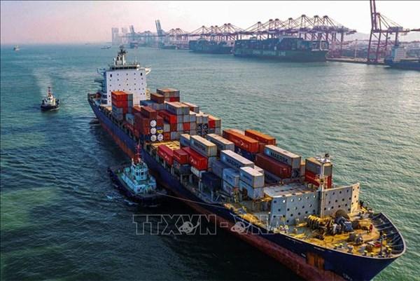 Các công ty Trung Quốc tiếp tục chi phối thị trường xuất khẩu thế giới