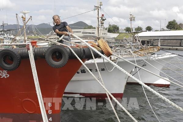 """Nhật Bản dồn sức chuẩn bị chống chọi với siêu bão """"mạnh nhất trong nhiều thập kỷ"""""""