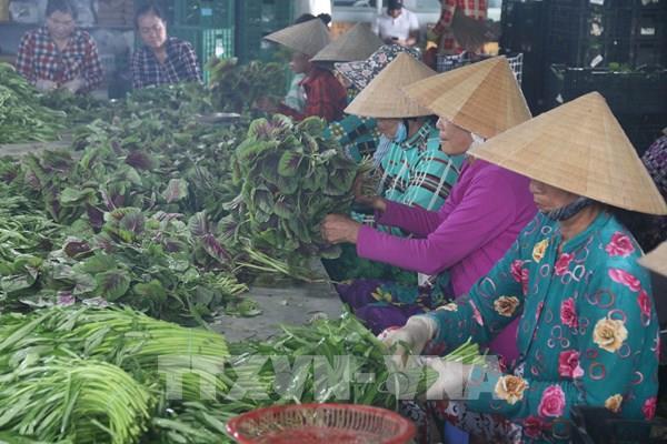 Tiền Giang quyết đầu ra cho nông sản hàng hóa
