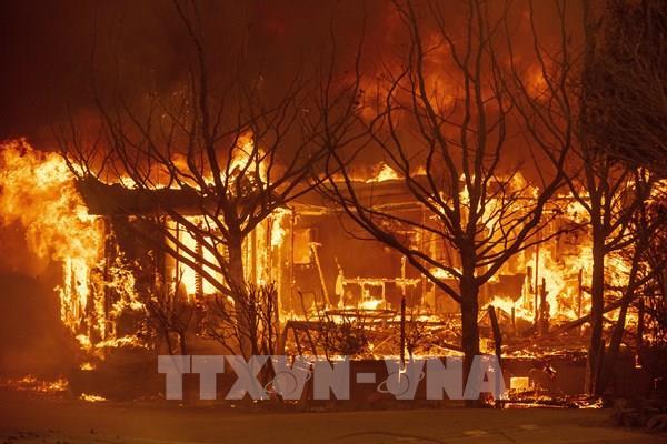 Mỹ: Bang California tuyên bố tình trạng khẩn cấp do cháy rừng