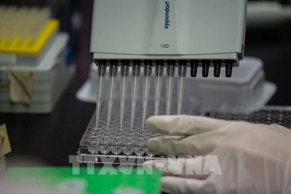 Hàn Quốc sản xuất đại trà kháng thể điều trị COVID-19 trong tháng 9