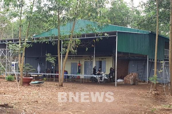 UBND tỉnh Lâm Đồng chỉ đạo xử lý nghiêm vụ phá rừng làm nhà trái phép