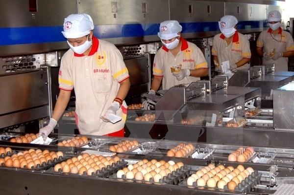 Quy định hạn ngạch thuế quan nhập khẩu thuốc lá nguyên liệu và trứng gia cầm