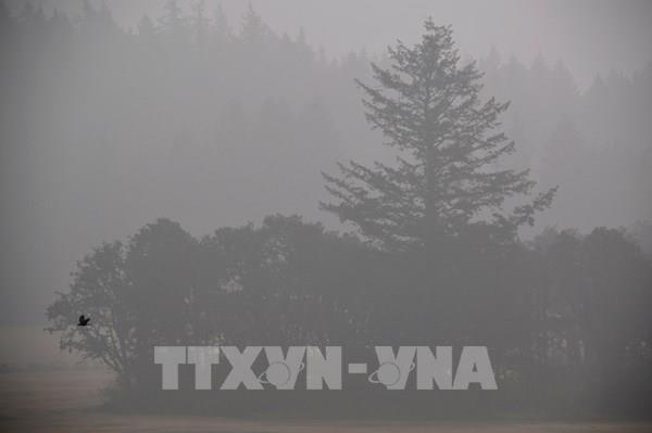 Khói từ những đám cháy rừng tại Mỹ đã lan tới châu Âu