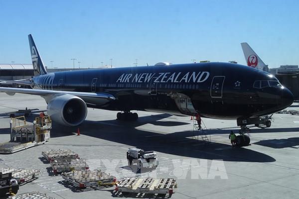 Air New Zealand đặt mục tiêu cắt giảm thêm lao động