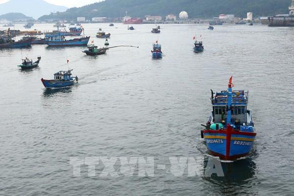 Gỡ nút thắt trong chuyển đổi nghề cho ngư dân ven biển