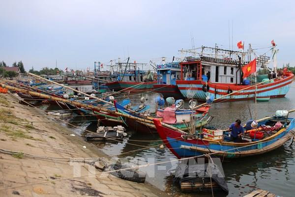 Cục Hàng hải Việt Nam lập 3 đoàn công tác ứng phó với cơn bão số 5