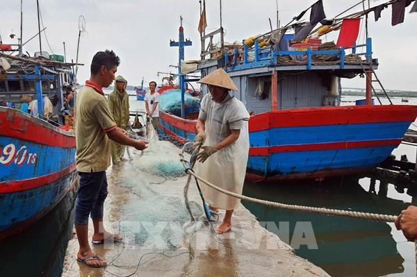Bão số 5: Quảng Nam đã sơ tán hơn 3.000 người dân đến nơi an toàn