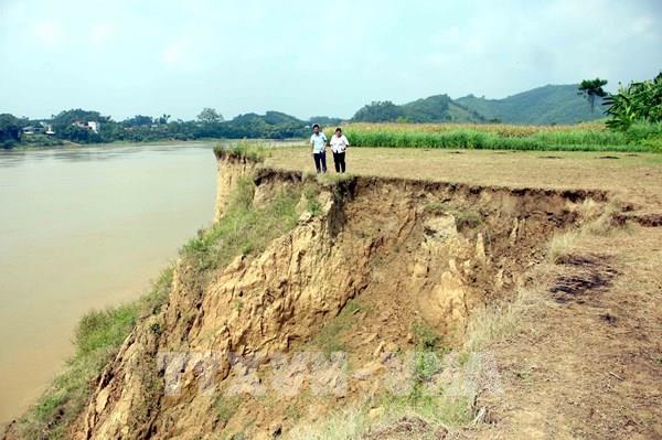 Sạt lở nghiêm trọng trên tuyến đê sông Lô qua tỉnh Tuyên Quang