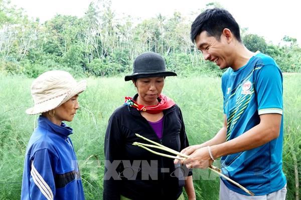 9X khởi nghiệp thành công nhờ trồng măng tây hữu cơ