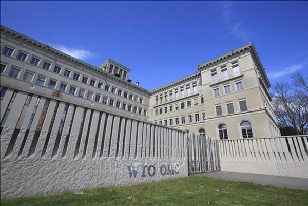 Những thách thức đối với WTO trong tiến trình chọn Tổng Giám đốc mới