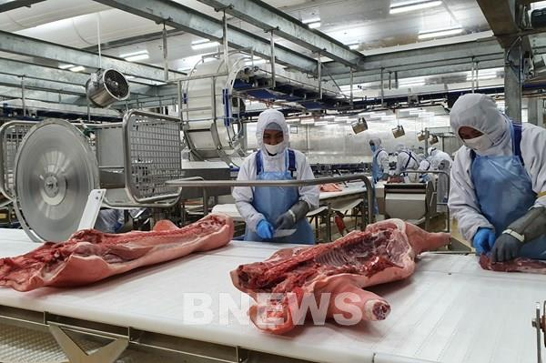 Masan chuẩn bị đưa vào hoạt động tổ hợp chế biến thịt mát thứ 2 tại Long An