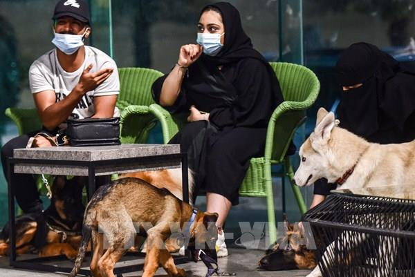 Quán cà phê đầu tiên dành cho chó tại vương quốc Hồi giáo