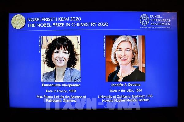 Giải Nobel Hóa học 2020 được trao cho hai nhà khoa học nữ