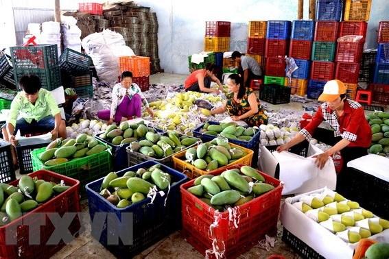 Đa dạng hoá thị trường để xuất khẩu tăng trưởng bền vững