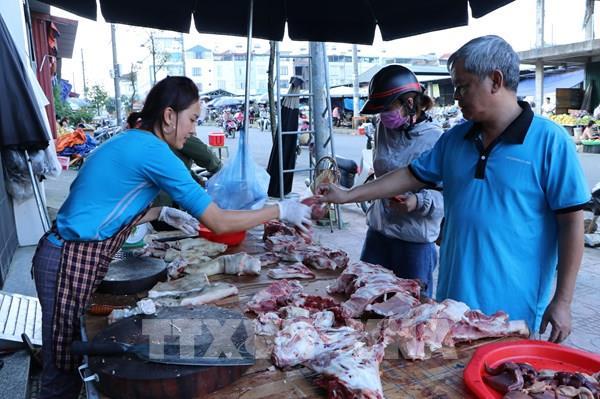 Khuyến cáo không tái đàn lợn ồ ạt để phục vụ Tết