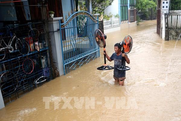 Điện lực Quảng Ngãi gấp rút xử lý sự cố, sớm cấp điện sau mưa bão