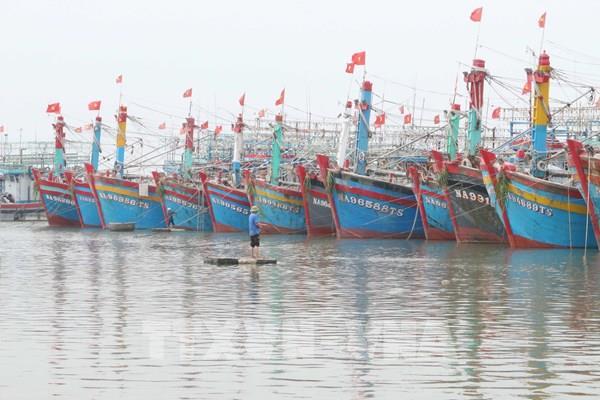 Hải Phòng: Tạm dừng các hoạt động giao thông đường thủy nội địa