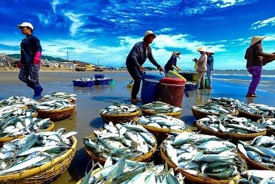 Xuất khẩu thủy sản của Campuchia giảm trên 80%
