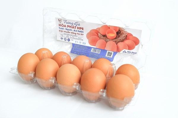 Hòa Phát sẽ đưa trứng gà sạch vào các siêu thị bán lẻ