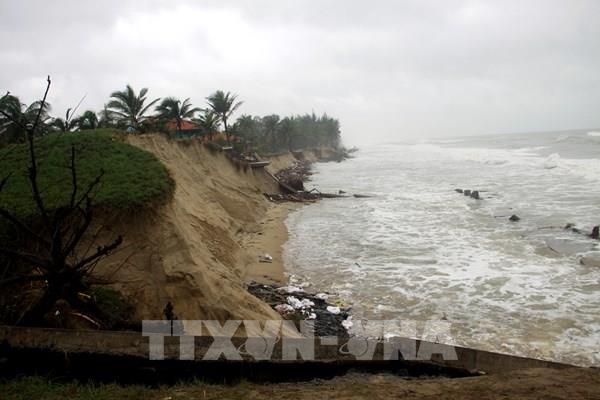 Quảng Nam: Bờ biển Thịnh Mỹ sạt lở hơn 400m do mưa lũ