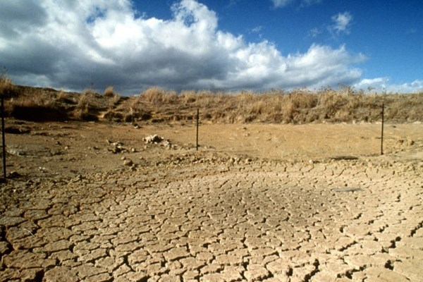 Châu Phi cần 50 tỷ USD/năm để ứng phó với biến đổi khí hậu