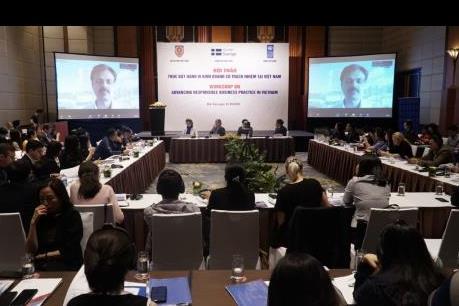 Đánh giá sơ bộ Khung pháp lý của Việt Nam về thực hành kinh doanh có trách nhiệm