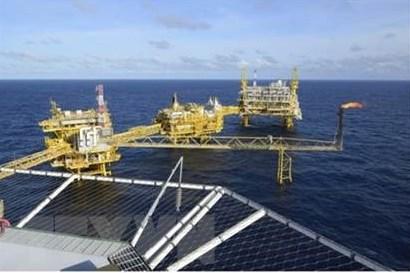 Ai Cập hoàn tất 12 thỏa thuận hợp tác dầu khí mới