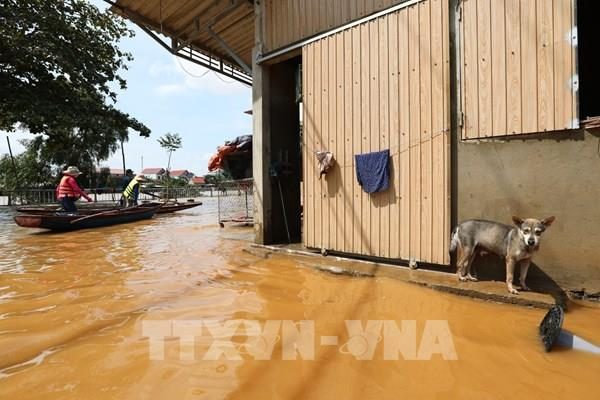 Quảng Bình: Kịp thời đưa người bị tai nạn giữa vùng lũ lụt biệt lập đi cấp cứu