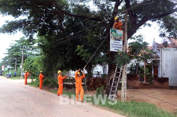 Bình Định lắp điện miễn phí cho hộ nghèo