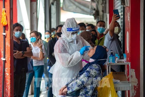 WHO: Hệ thống y tế thế giới có thể quá tải trong đại dịch COVID-19