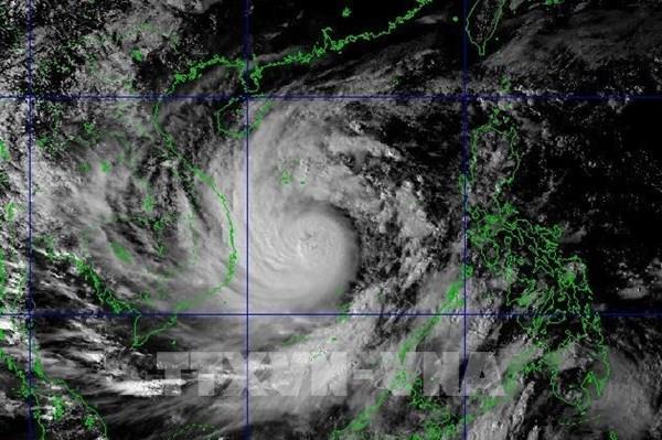 Ứng phó bão số 9:  Ngành công thương thực hiện các giải pháp cấp bách để giảm thiệt hại