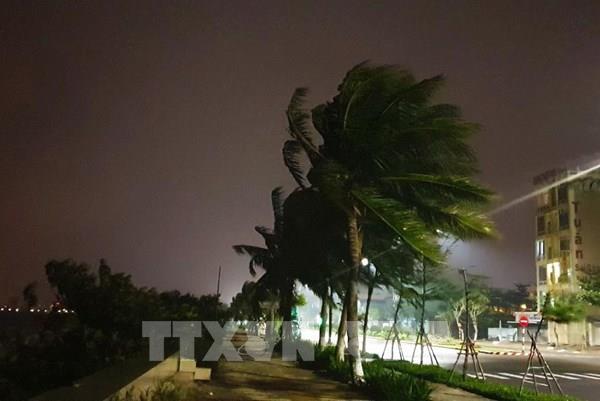 Bão số 9 ở ngay vùng biển ngoài khơi từ Đà Nẵng đến Phú Yên, gió mạnh cấp 13, giật cấp 16