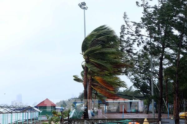Đà Nẵng có gió giật mạnh, mưa to, gió thổi bay nhiều biển quảng cáo