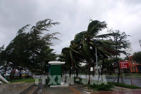 Bão số 9 gây mất điện ở một số khu vực miền Trung