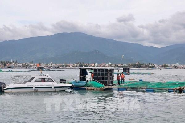 Vẫn còn 46 tàu cùng với 368 ngư dân của Bình Định chưa ra khỏi khu vực nguy hiểm