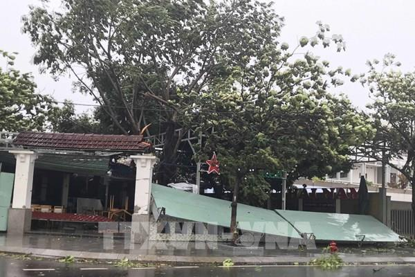 Đường dây nóng phòng chống thiên tai tại Bình Định