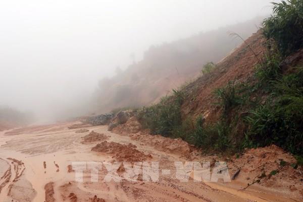 Quảng Nam: Thông tin ban đầu về 53 người mất tích do sạt lở đất ở Nam Trà My