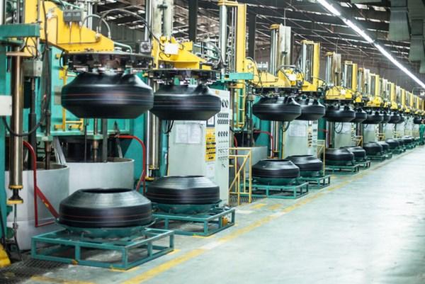 Công ty cổ phần Cao su Đà Nẵng dự kiến trả cổ tức tỷ lệ 5%