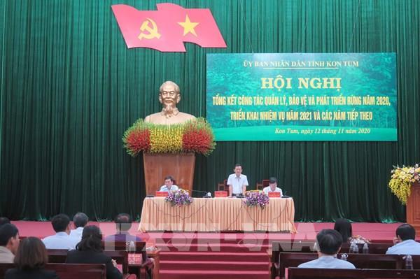 Kon Tum: Không bảo vệ được rừng người đứng đầu cấp ủy phải chịu trách nhiệm